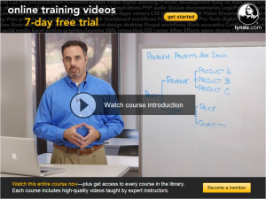 The Structured Problem Solving Course on lynda.com