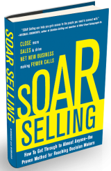 Soar Selling by David and Marhnelle Hibbard