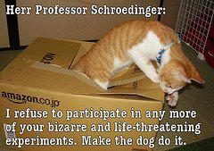 Schroedinger's Cat Jumping Out of the Box